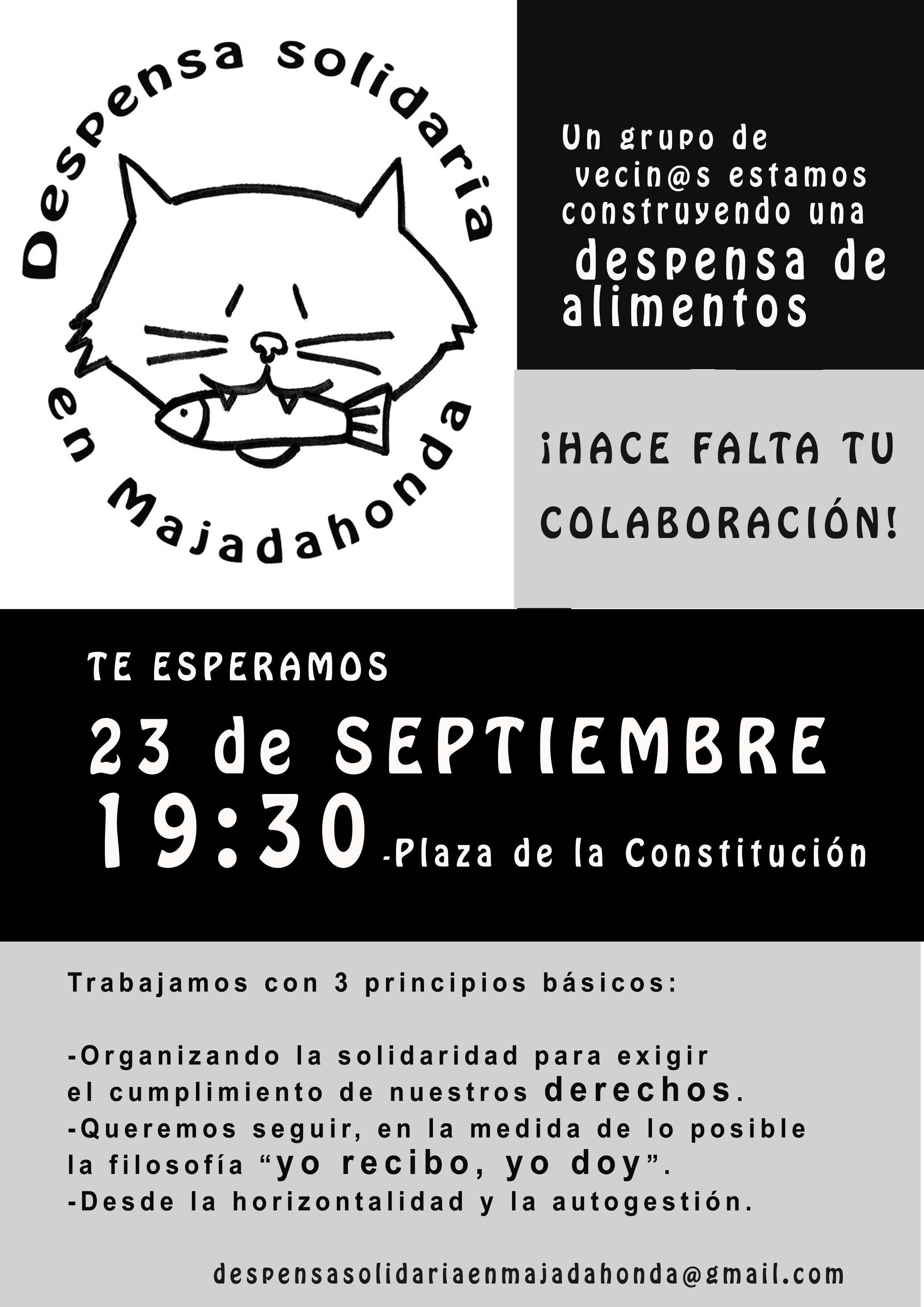 Cartel Despensa solidaria corto copia (1)